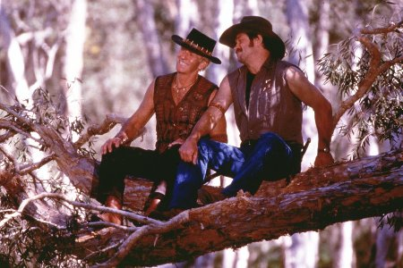 http://www.the-reel-mccoy.com/movies/2001/images/CrocDundee2.jpg