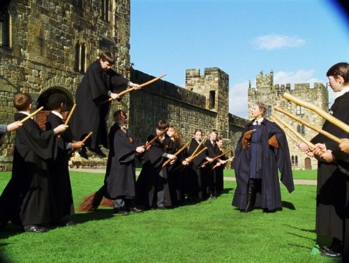 picture from Harry Potter and the Sorcerer's Stone
