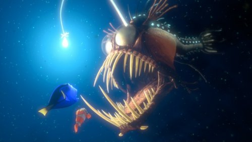 finding nemo dory. picture from Finding Nemo
